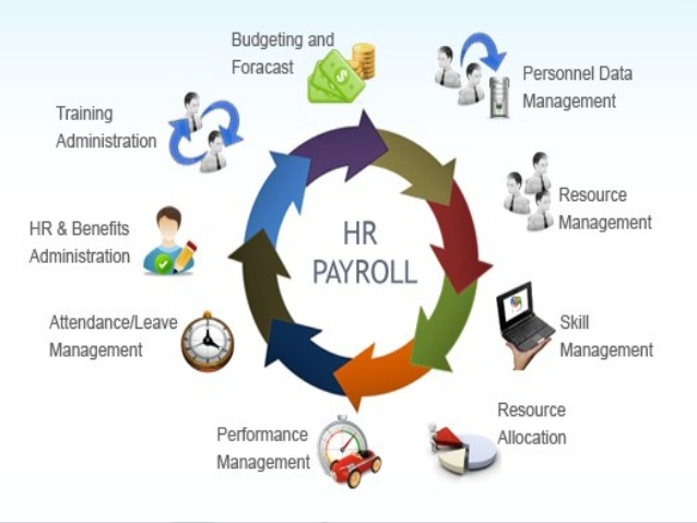 hr-payroll-software-baseit